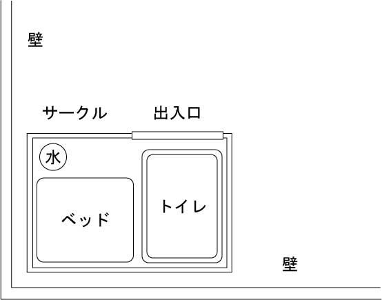 サークル内の配置