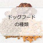 イタグレが食べるドッグフードの種類