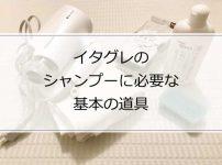 イタグレのシャンプーに必要な基本の道具5選